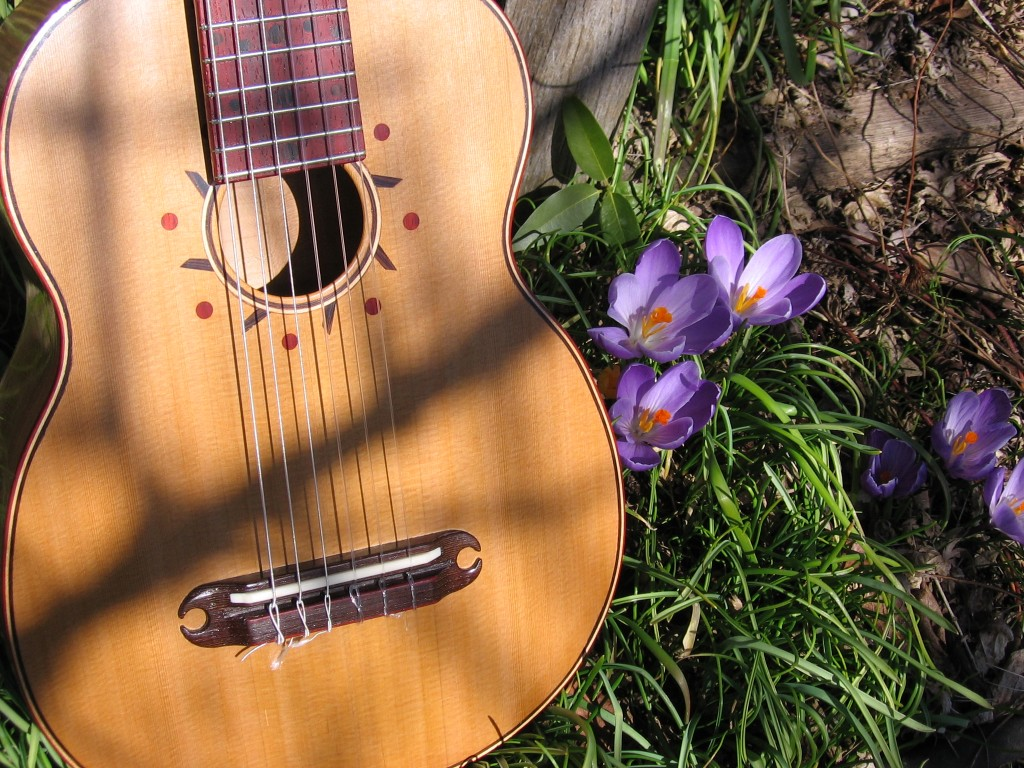 Mini guitar in the spring
